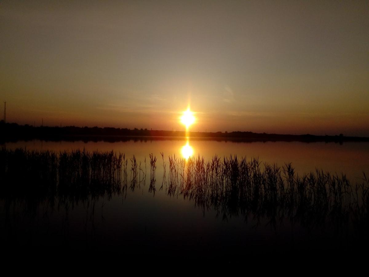 močvarno, odraz, sjena, silueta, Sunce, zalazak sunca, močvara, voda, večer, ljeto