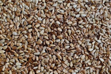 kernel, seed, sunflower seed, brown, dry, food, nutrition, batch, ingredients, diet