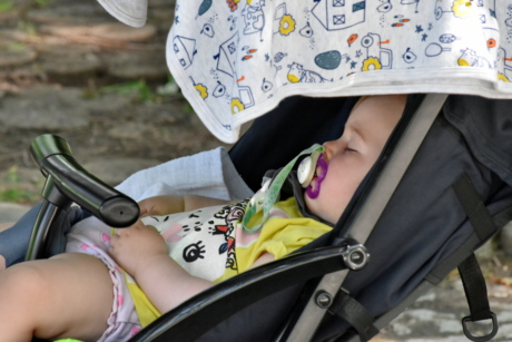 baby, childhood, side view, sleeping, portrait, child, outdoors, beautiful, summer, cute