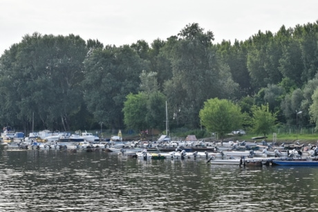 marina, shore, vehicle, water, lakeside, watercraft, tree, river, lake, wood