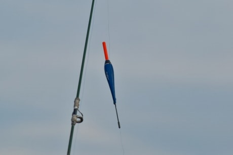 fishing gear, fishing rod, stick, precision, wind, recreation, nature, competition, outdoors, action