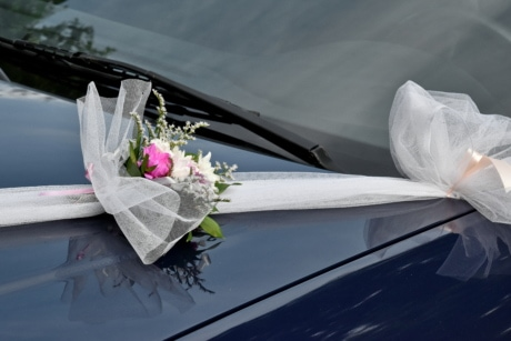 ceremony, wedding, windshield, love, marriage, car, flower, engagement, nature, romance