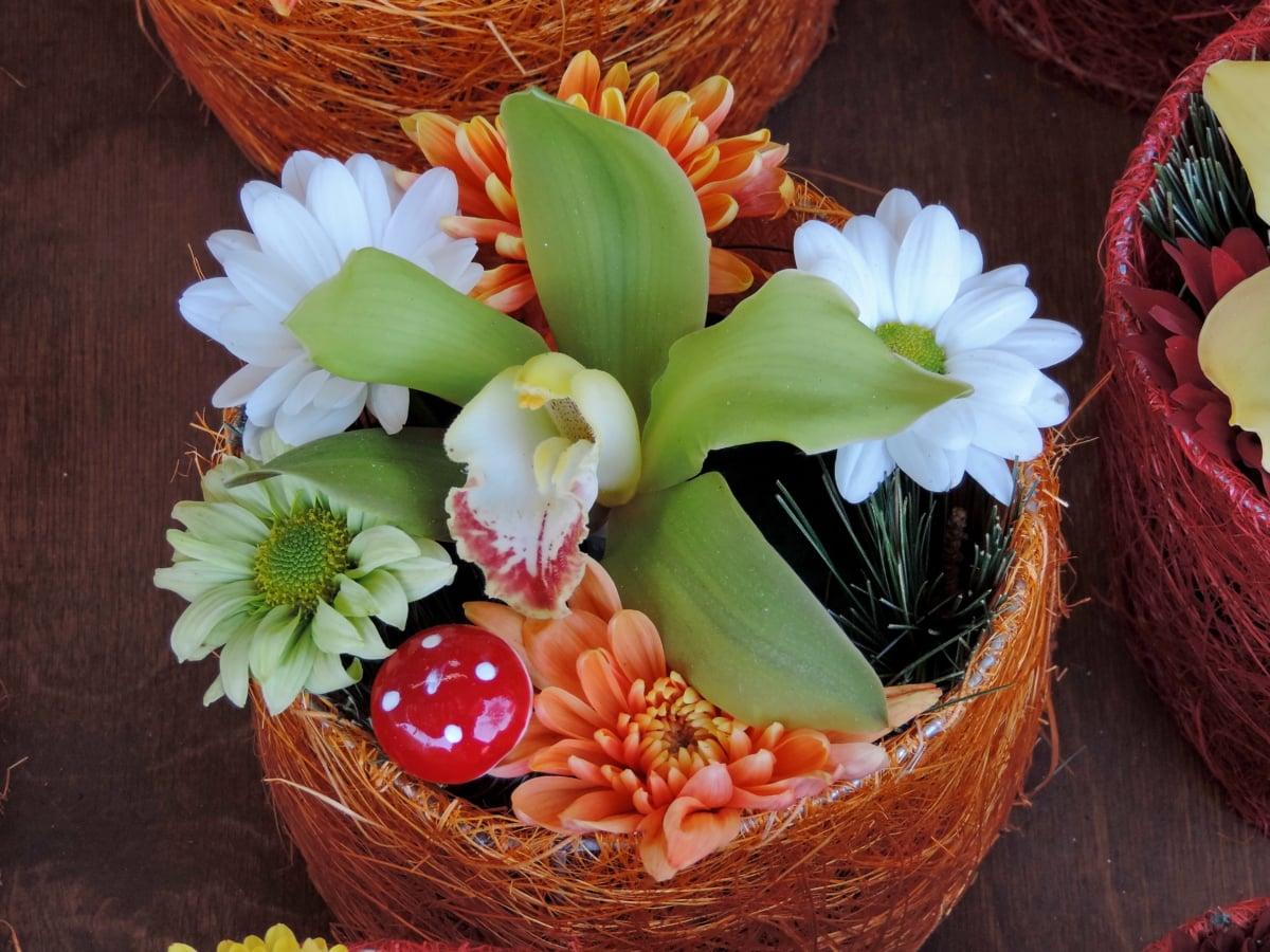 장식, 화분, 오키드, 배열, 꽃, 부케, 자연, 바구니, 잎, 밝은