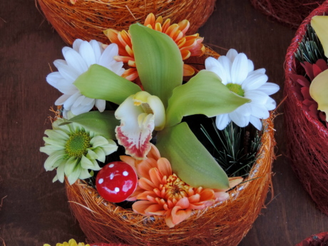 decoration, flowerpot, orchid, arrangement, flower, bouquet, nature, basket, leaf, bright