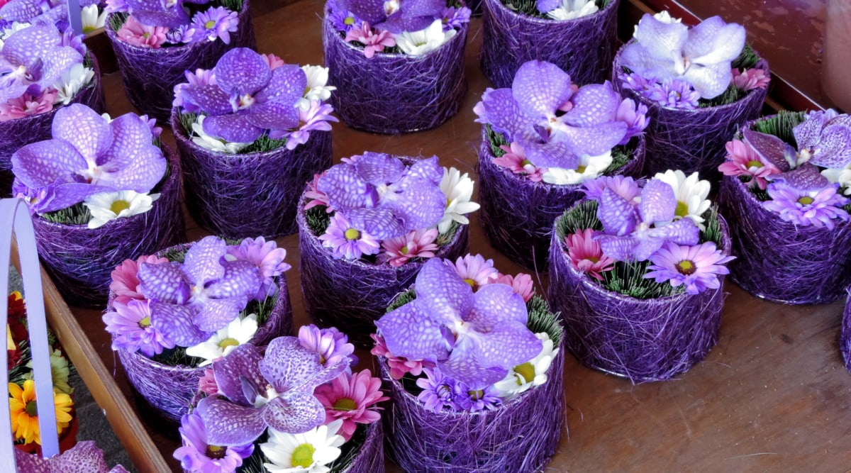 disposizione, vaso di fiori, fatto a mano, orticoltura, orchidea, viola, fiore, decorazione, Flora, aromaterapia