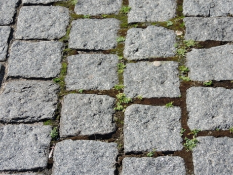 avenue, cobblestone, pavement, rough, wall, surface, stone, dirty, old, ground