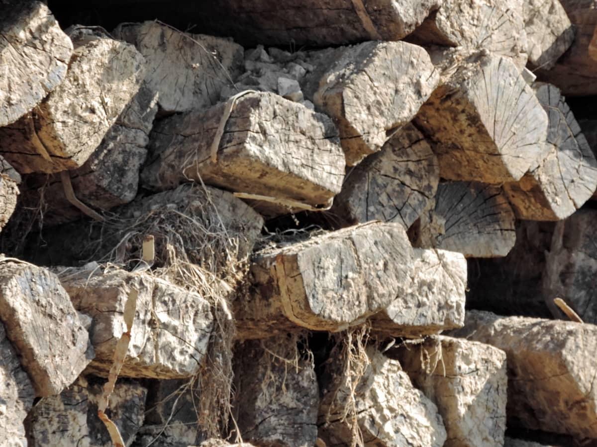 drva za ogrjev, gomila, drvo, barijera, struktura, hrpe, priroda, grubo, na otvorenom, stari
