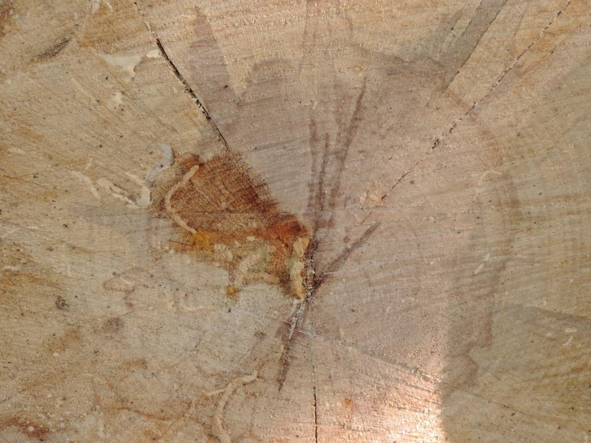 薪, 汚れ, ラフ, テクスチャ, 汚い, 古い, パターン, 崩壊, 表面, 資材