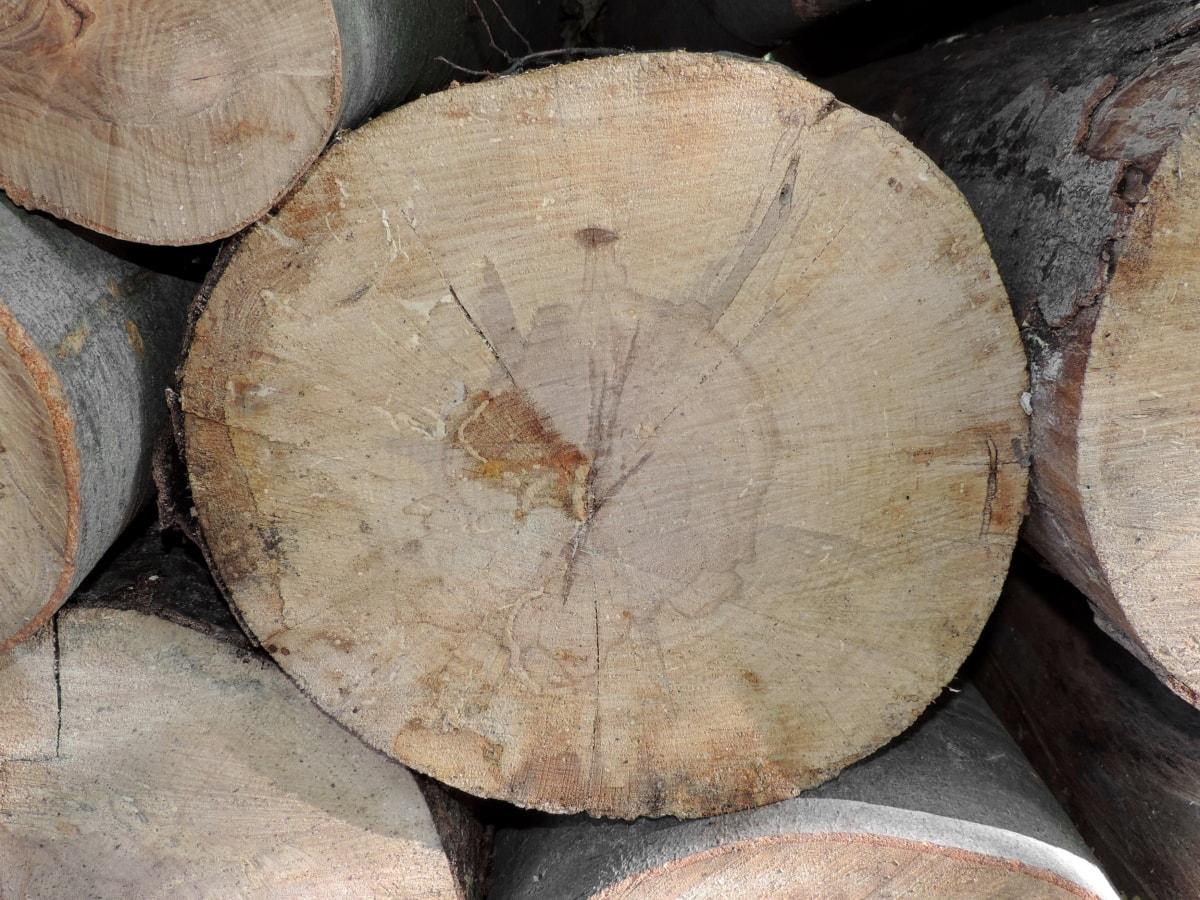 drva za ogrjev, gomila, drvo, kora, industrija, stari, priroda, drvo, krug, prtljažnik