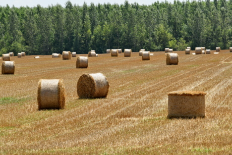 agriculture, autumn, bale, cereal, circle, cloud, countryside, crop, dry, farming