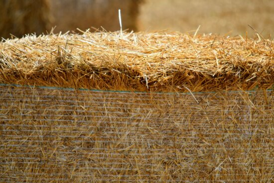 agriculture, bale, countryside, dry, farmland, field, harvest, hay, haystack, land