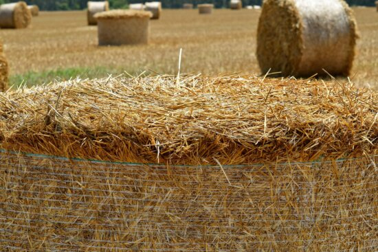agriculture, countryside, farmland, field, grass, harvest, hay, haystack, land, landscape