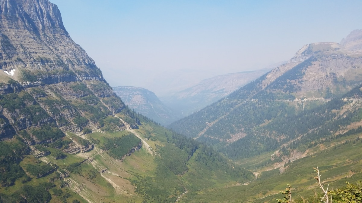 foggy, foliage, hillside, valley, nature, mountain, high land, landscape, mountains, hill