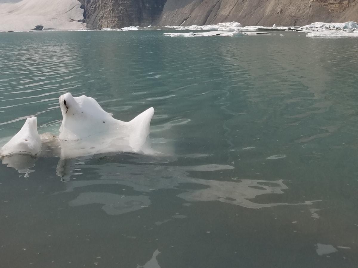 冰, 冰山, 海, 水, 海洋, 霜, 湖, 冬天, 性质, 冷