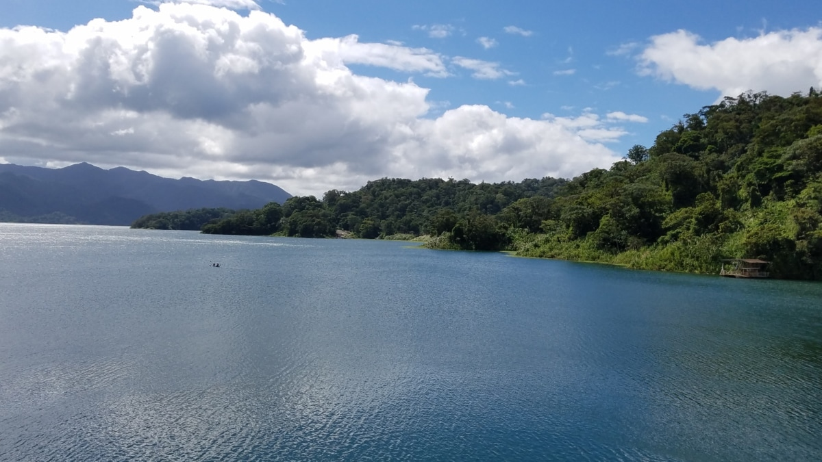 tóparti, tó, táj, víz, Shore, természet, fa, hegyi, fa, strand