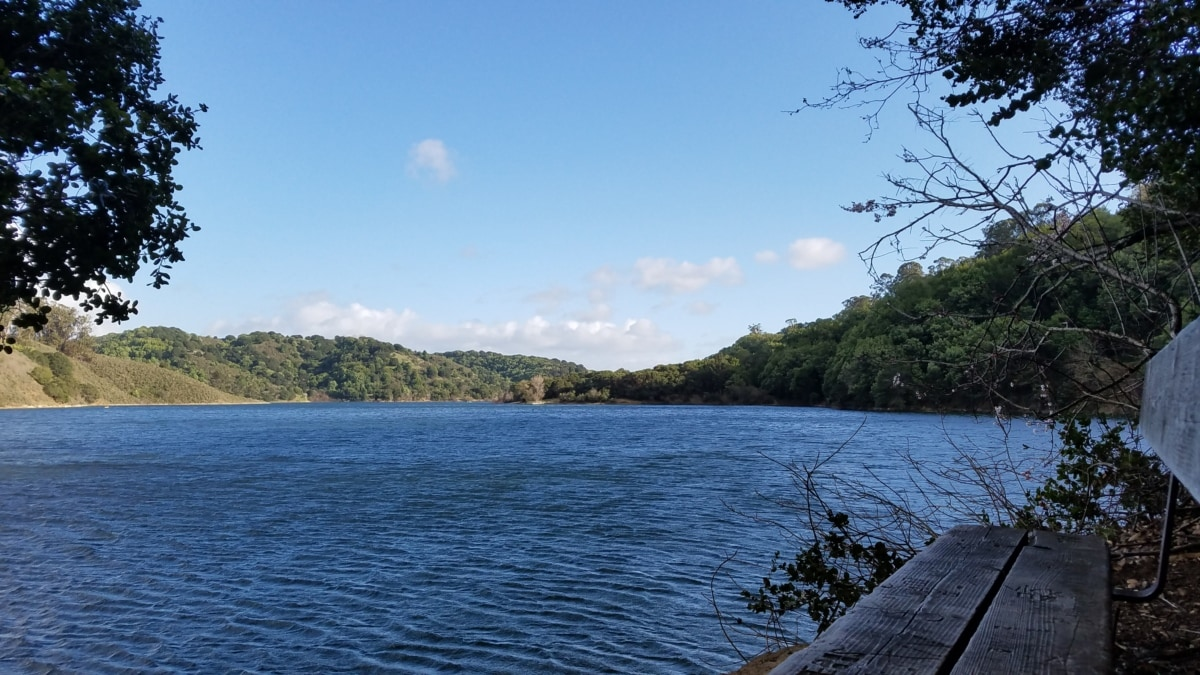 bench, calm, lake, surface, water, landscape, shore, basin, lakeside, tree
