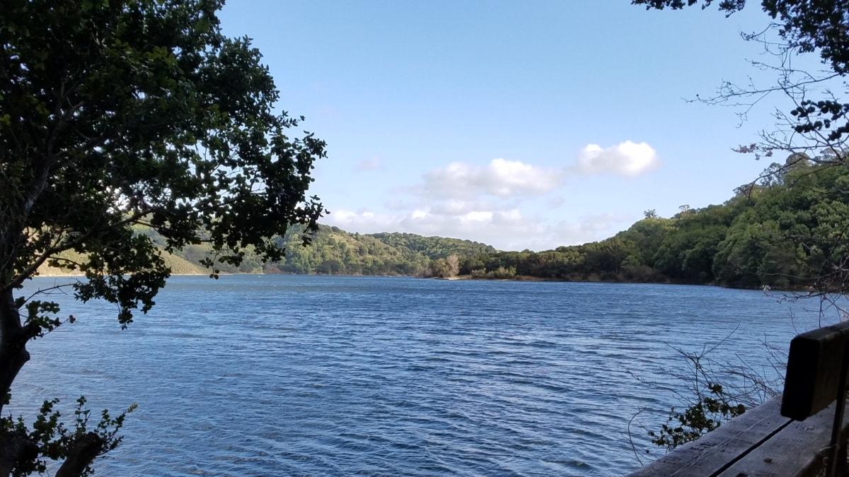 bench, lakeside, panorama, shadow, water, basin, landscape, shore, lake, tree