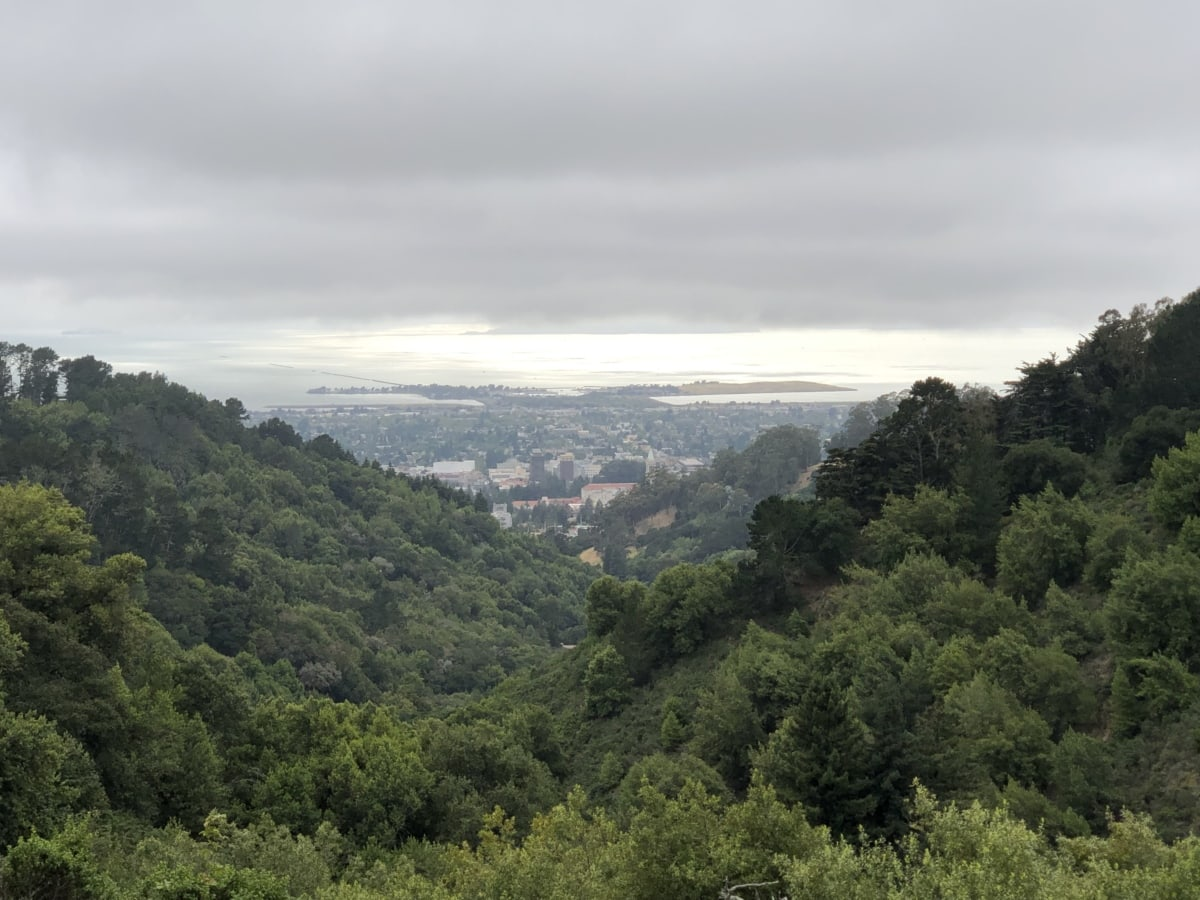 forest, hilltop, panorama, town, landscape, mountain, high land, nature, mountains, range