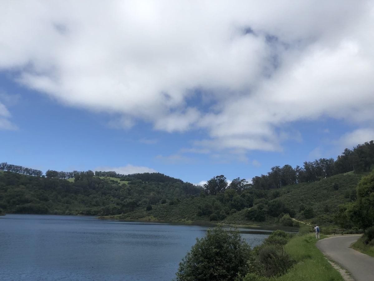 lakeside, person, road, landscape, water, nature, shore, river, lake, tree
