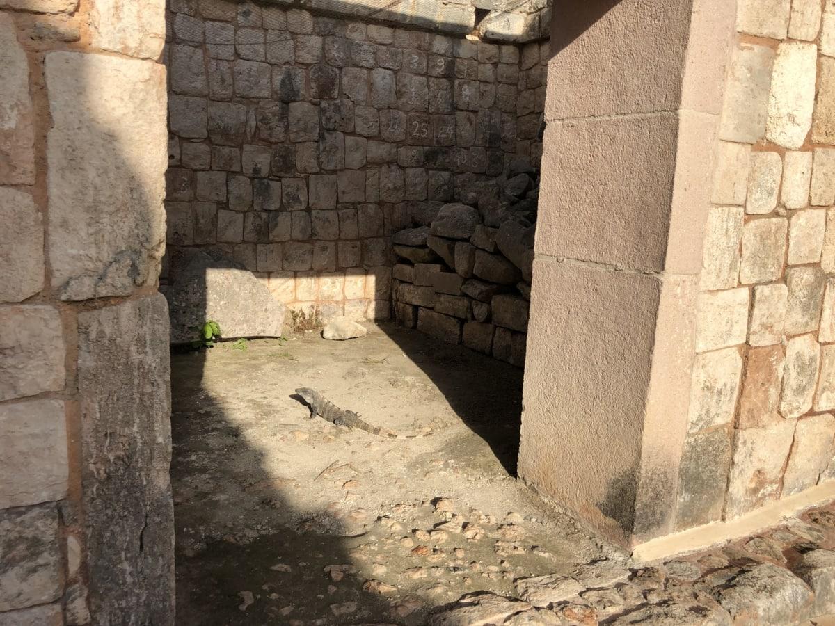 Archeologie, voordeur, schaduw, stenen muur, zonnestralen, oude, het platform, steen, muur, baksteen