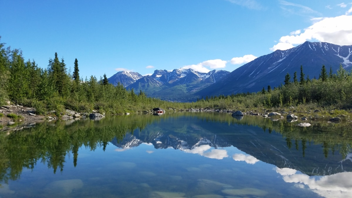 schönes Foto, Reflexion, See, Wald, Landschaft, Angebot, Gletscher, Berg, Berge, Wasser