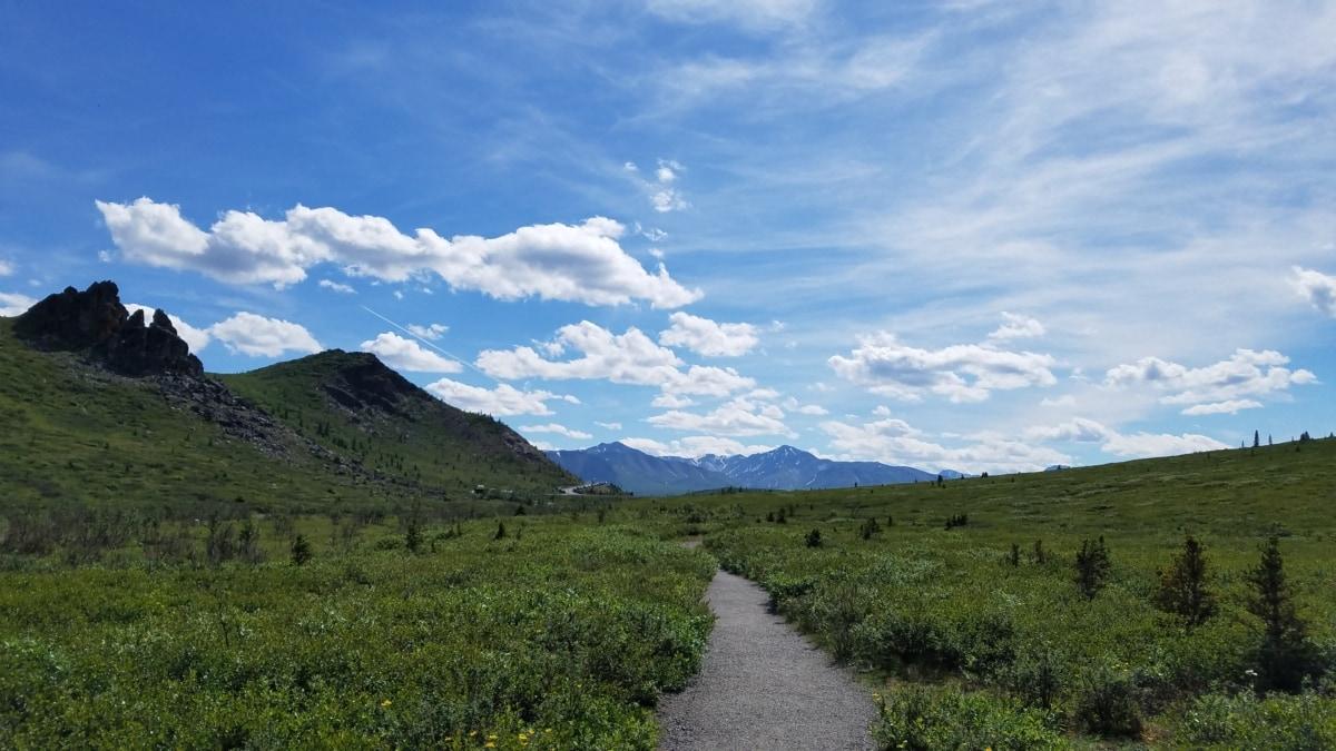 Carretera, desierto, Highland, rango, montaña, montañas, paisaje, naturaleza, al aire libre, césped