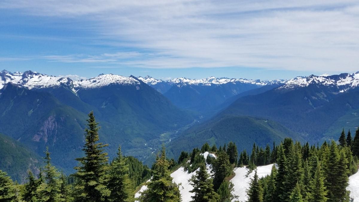 snijeg, krajolik, raspon, ledenjak, planine, vrh, planine, drvo, zima, led