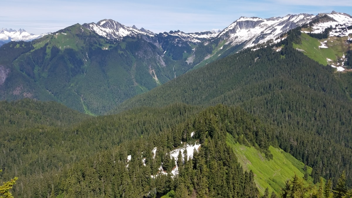 coníferas, bosque, pico de la montaña, nieve, rango, montañas, paisaje, montaña, madera, Valle
