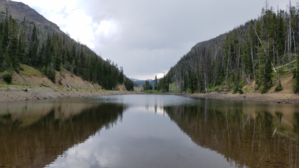 calm, riverbank, water, lake, wood, shore, nature, landscape, channel, lakeside