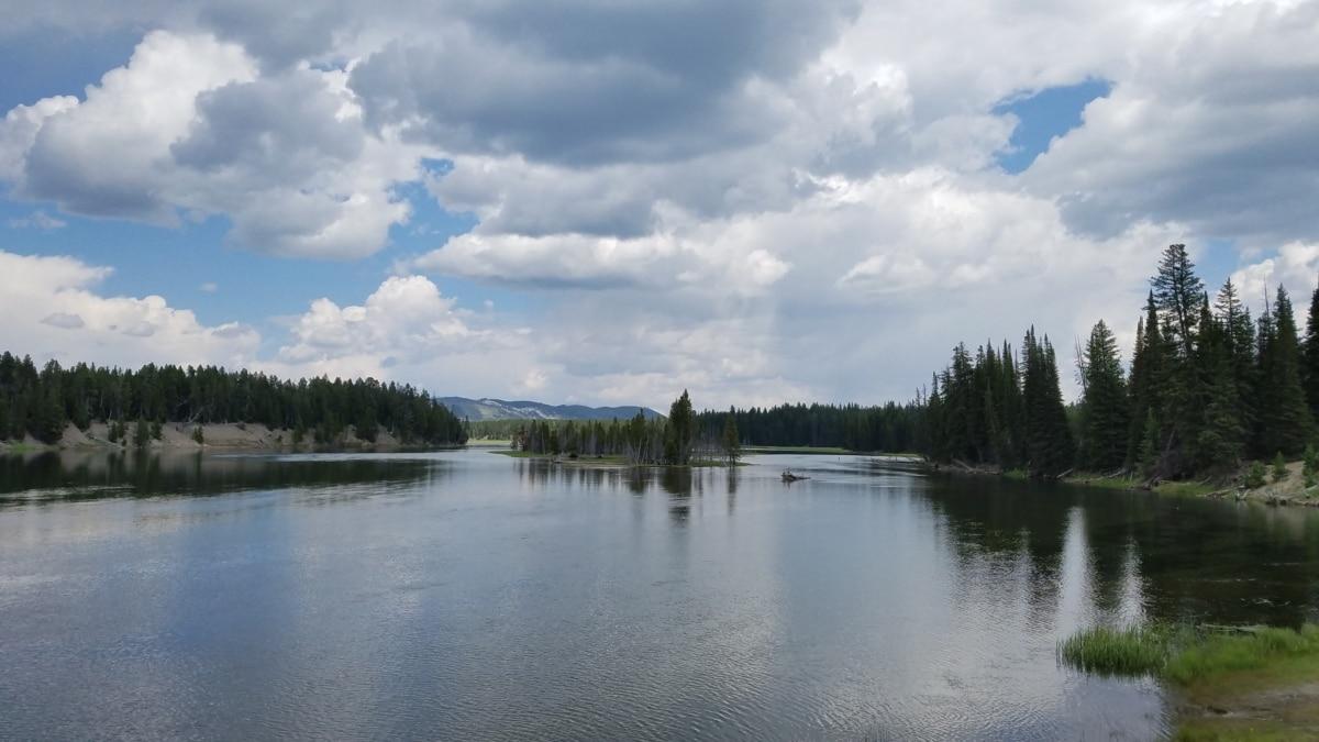 jezero, jezero pejzaž, krajolik, voda, obala, šuma, odraz, priroda, drvo, drvo