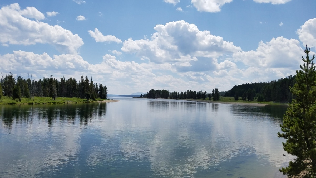 landscape, lake, water, atmosphere, forest, reflection, nature, wood, summer, tree