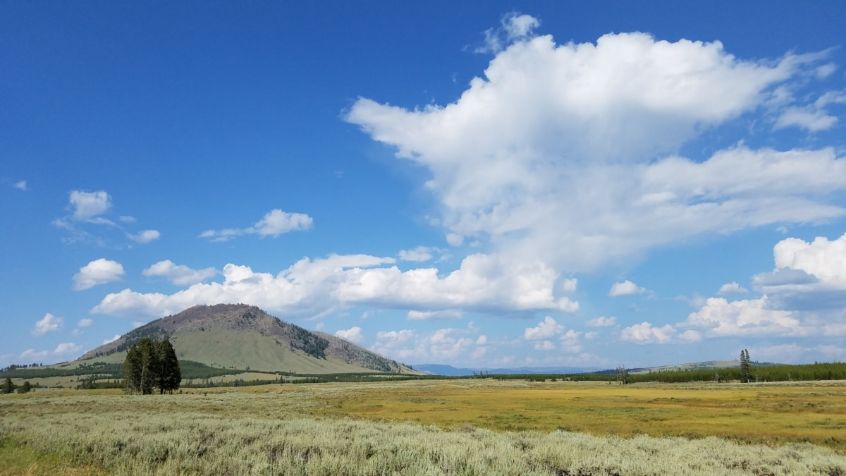 llano, paisaje, campo, césped, rural, naturaleza, estepa, al aire libre, campo, verano