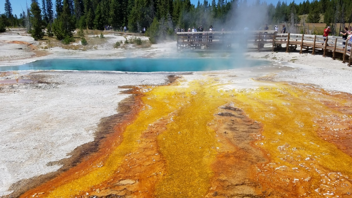 geyser, hot spring, water, thermal, beach, landscape, scenic, park, geology, outdoors