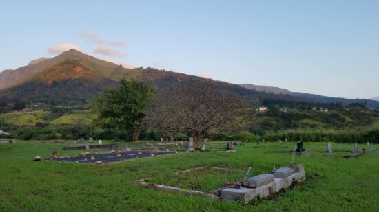 cemetery, gravestone, landscape, nature, outdoors, grass, tree, summer, countryside, architecture
