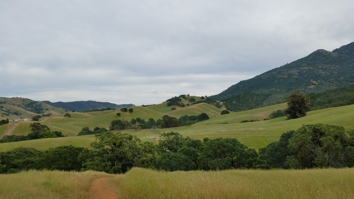 nature, range, high land, mountains, landscape, mountain, grass, countryside, hill, tree