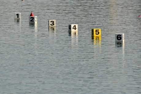 canoeing, number, start, track, lake, water, wood, reflection, flood, nature