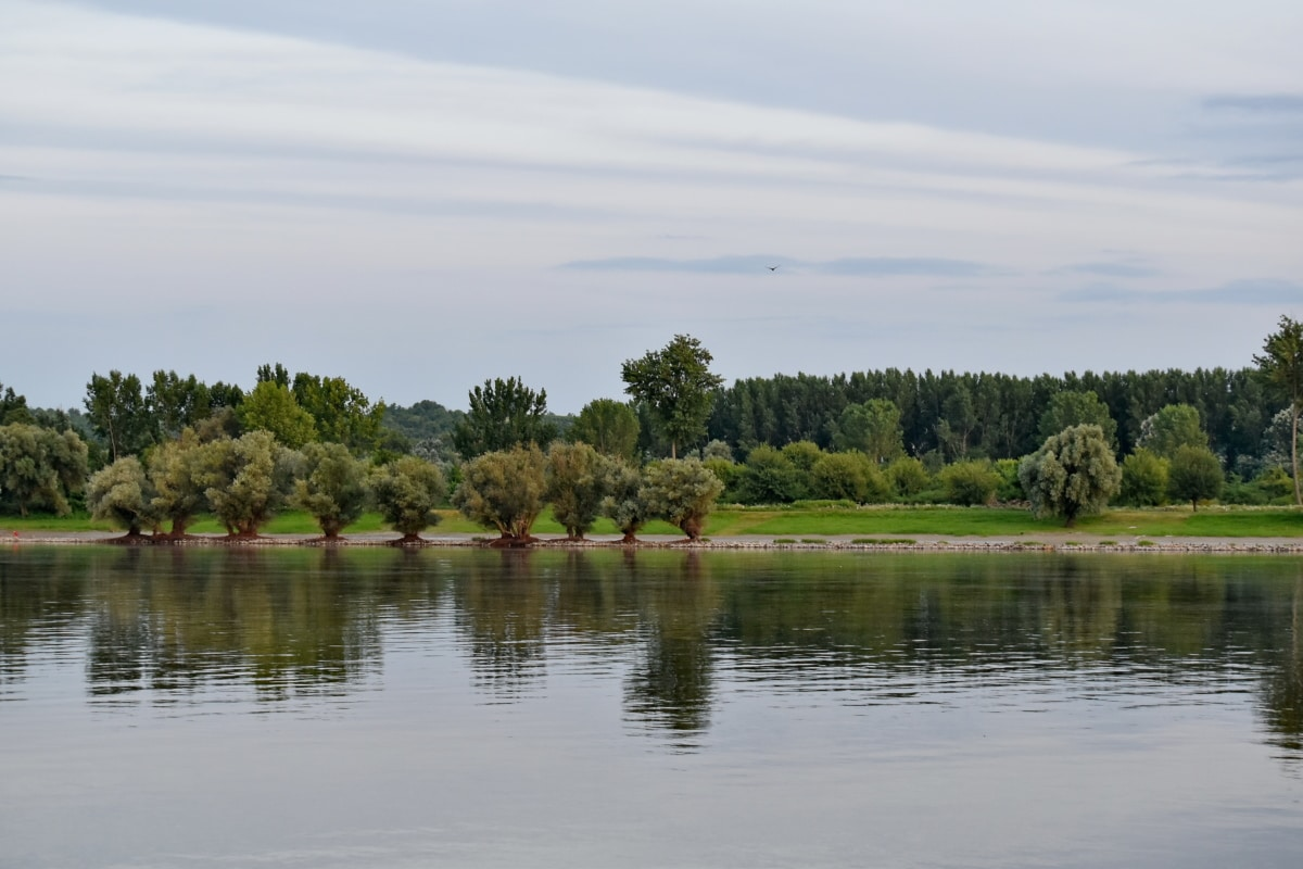 river, riverbank, landscape, forest, land, water, reflection, tree, nature, pool