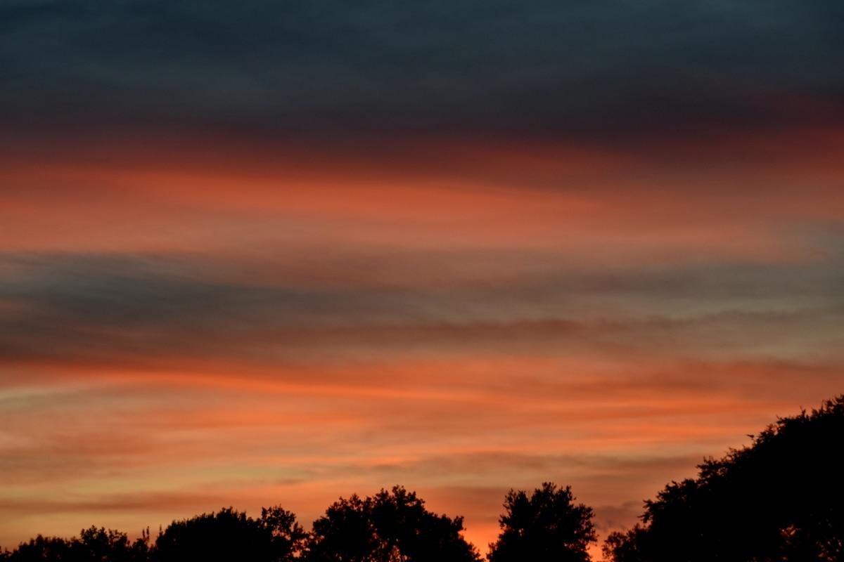 naplemente, este, táj, Hajnal, felhők, nap, légkör, alkonyat, természet, sziluettjét