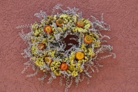 circle, decorative, dry, flowers, shape, still life, wall, nature, flower, texture