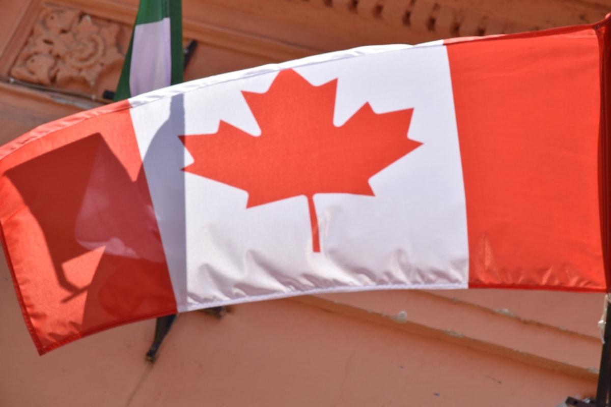 Kanadský, vlajka, znak, národné, voľby, vlastenectvo, vietor, demokracia, vonku, symbol
