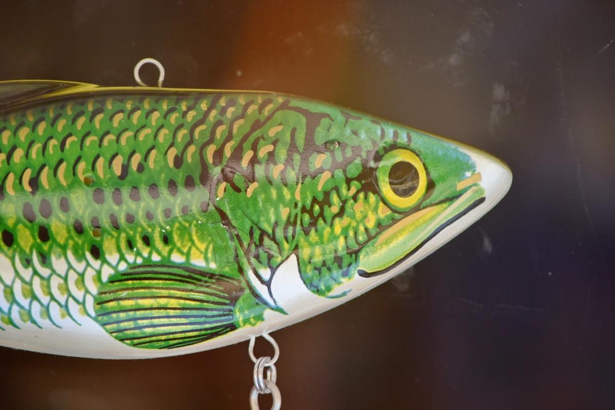 vistuig, voorwerp, vis, natuur, Kleur, aas, camouflage, detail, groen, groenachtig geel