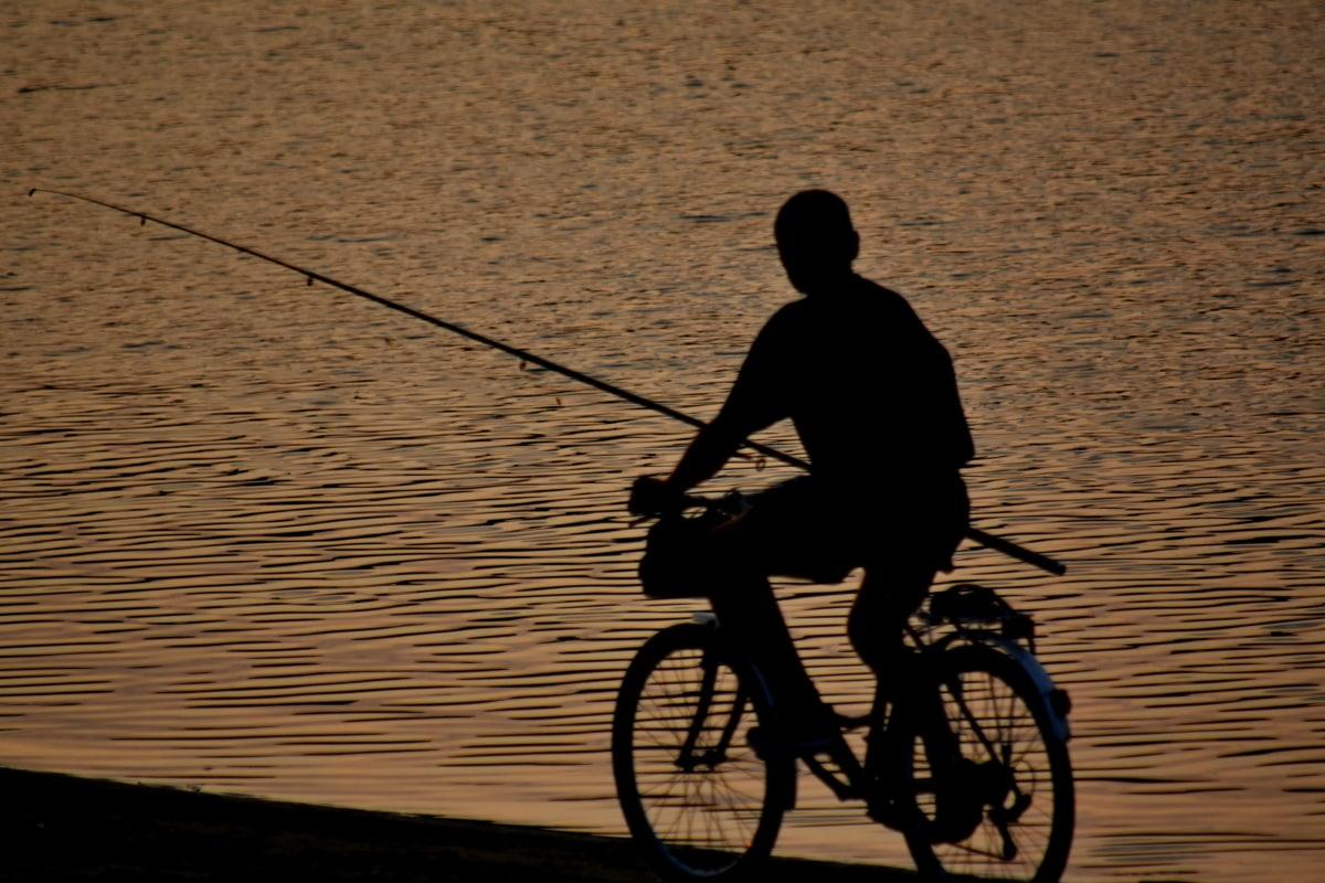 strand, cykel, skumring, fisker, fiskestang, silhuet, sport, cykling, hjulet, cyklus