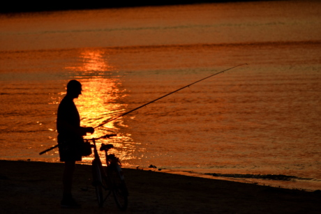 beach, bicycle, fishing gear, sunset, sea, water, silhouette, fisherman, people, dawn
