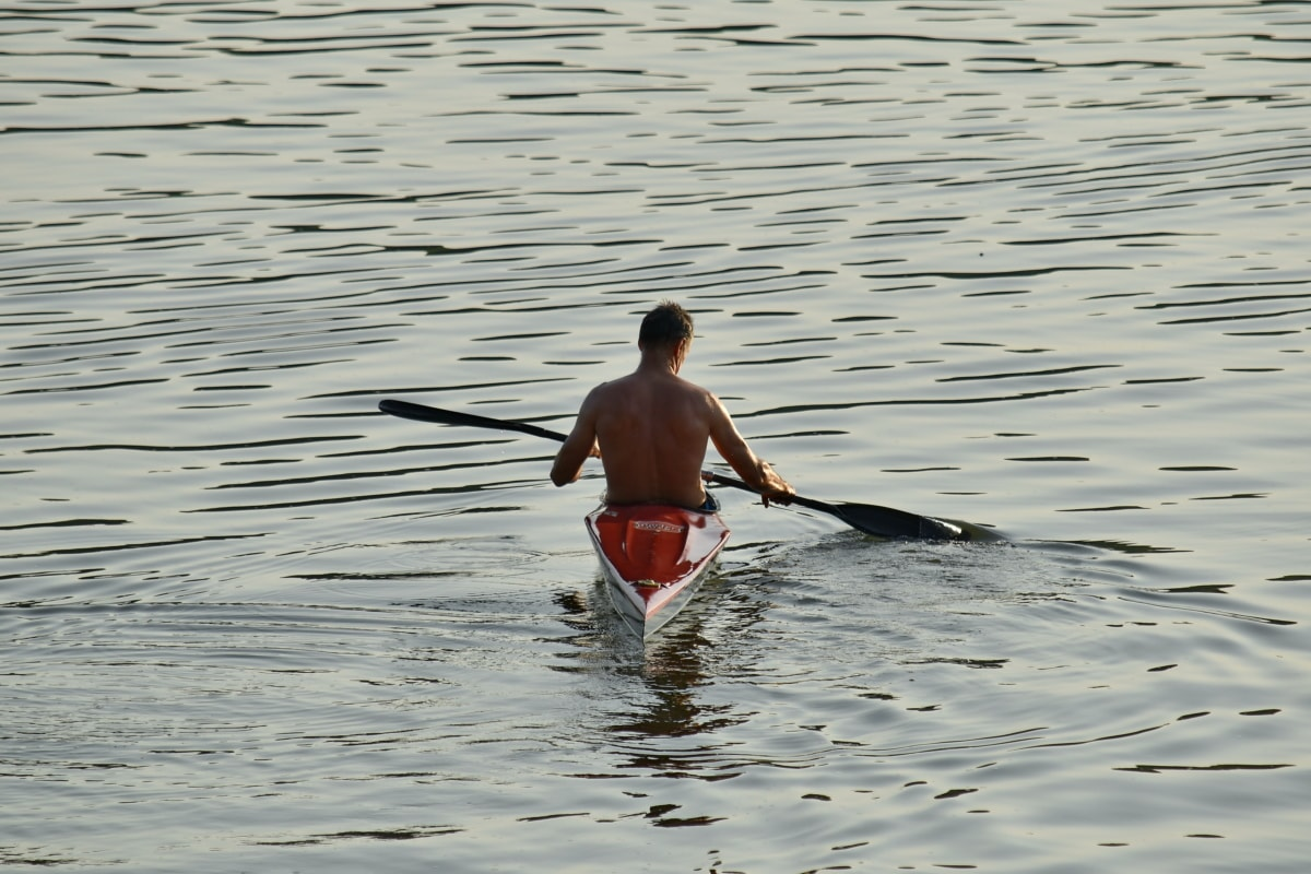 canoe, canoeing, handsome, man, sport, oar, paddle, water, river, reflection