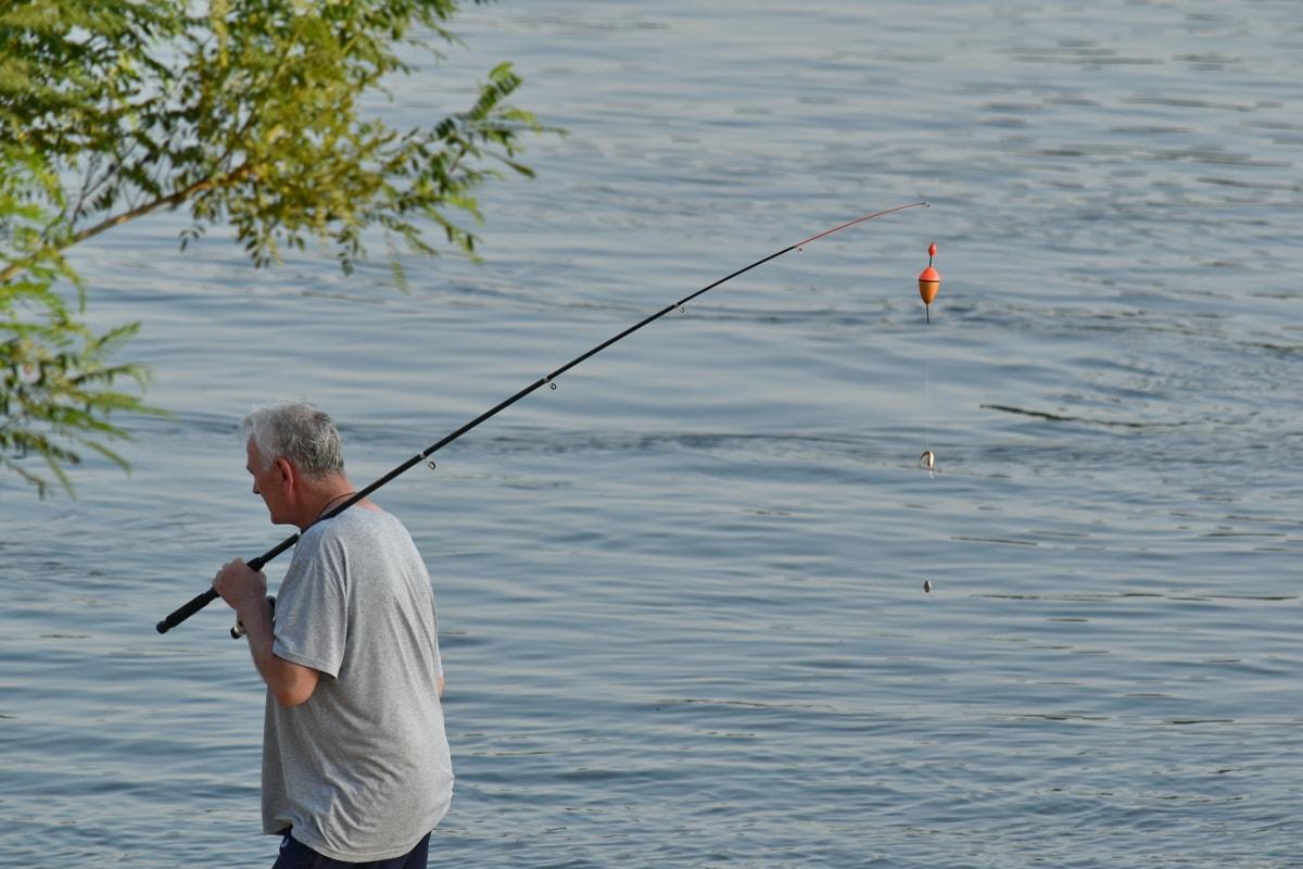 kuka, štap za ribolov, ribar, sportski, voda, riba, ribič, mamac, jezero, rijeka