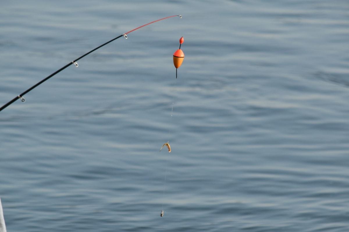 engins de pêche, canne à pêche, équipement, eau, nature, réflexion, été, Recreation, amusement, objet