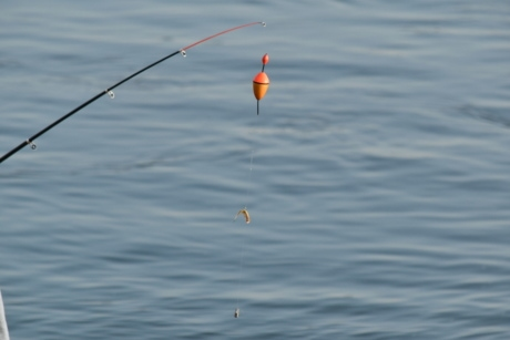 fishing gear, fishing rod, equipment, water, nature, reflection, summer, recreation, fun, object