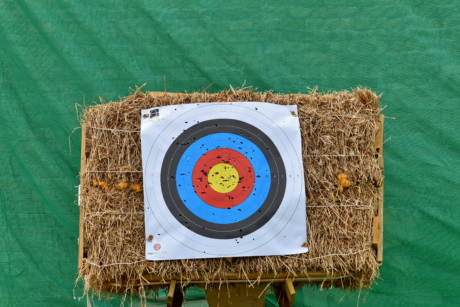archery, practice, sport, target, hay, straw, nature, summer, symbol, fun