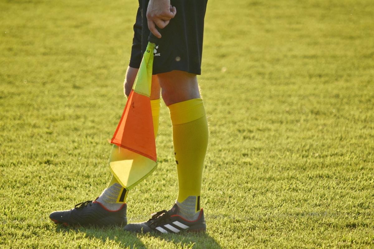 Bandeira, futebol, juiz, futebol, grama, jogador, desporto, jogo, concorrência, diversão