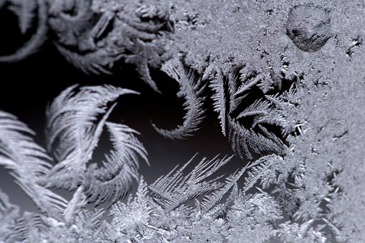 hideg, Részletek, fagyos, fagyasztott, jég-kristály, hópehely, fekete-fehér, téli, fagy, hó